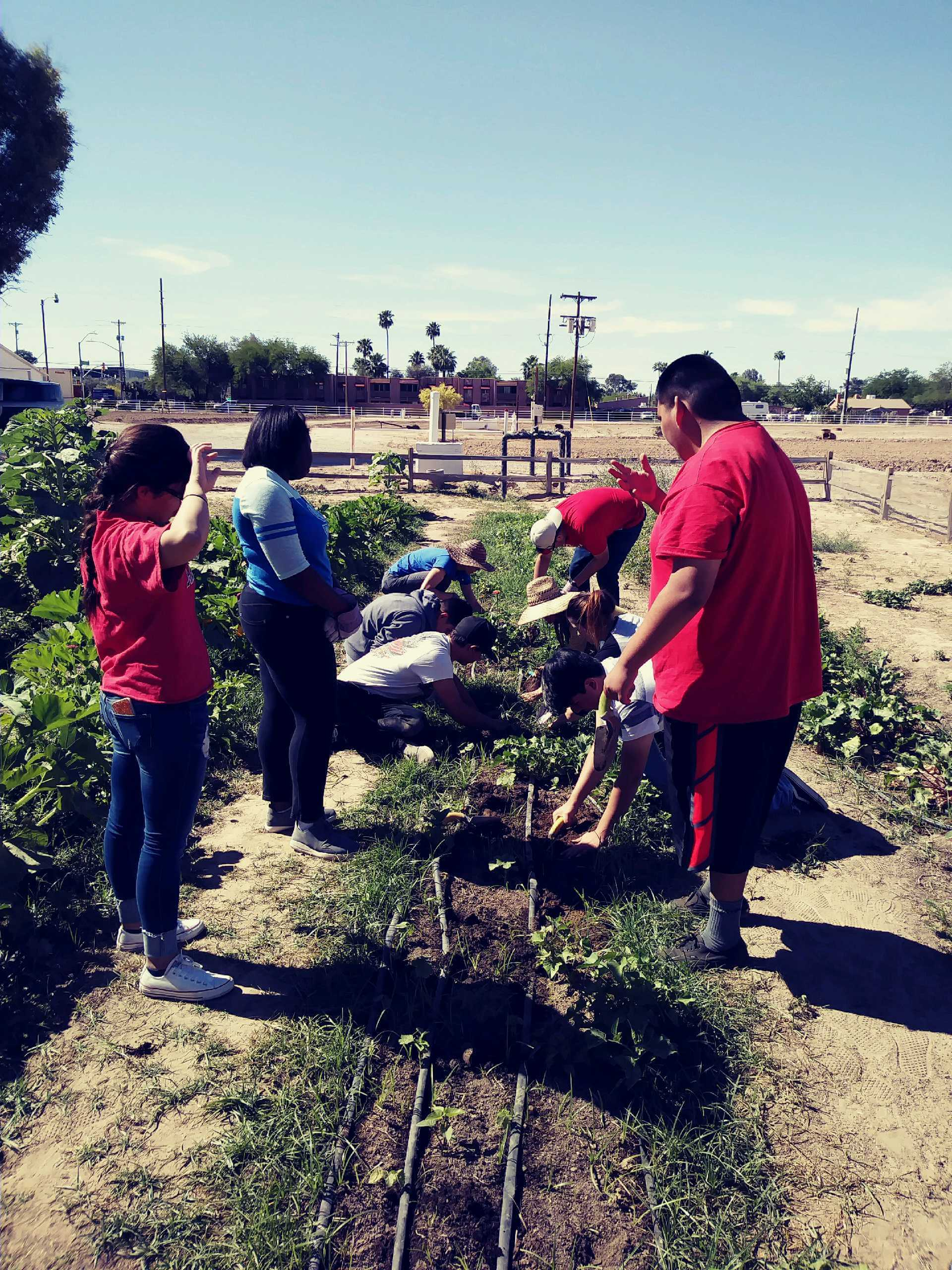 Students working on garden